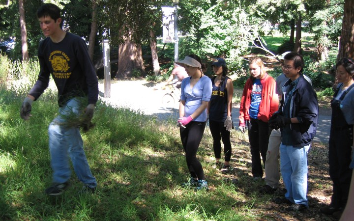 Nathan Bickart shows the grads how to identify and uproot invasive grass.