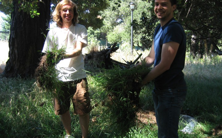 Grads pose with the invasive grass, as they loosen the soil from the roots.