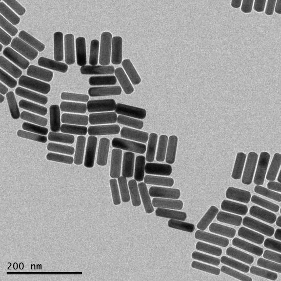 Figure 1: Transmission Electron Micrograph of gold nanorods that I made. These aren't replicating any time soon, even if you add more gold—they would just get fatter.