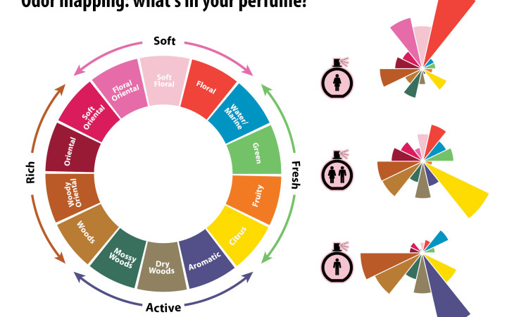 Left: A polar representation of the major scents that contribute to a perfume's overall aroma. Originally proposed in Michael Edwards' Fragrances of the World, this odor mapping has since received support from research in cognitive psychology. Right: the relative distribution of each scent group in women's, unisex, and men's perfumes. Credits: design: Alex Hernsdorf; perfume bottle: freepik.com.