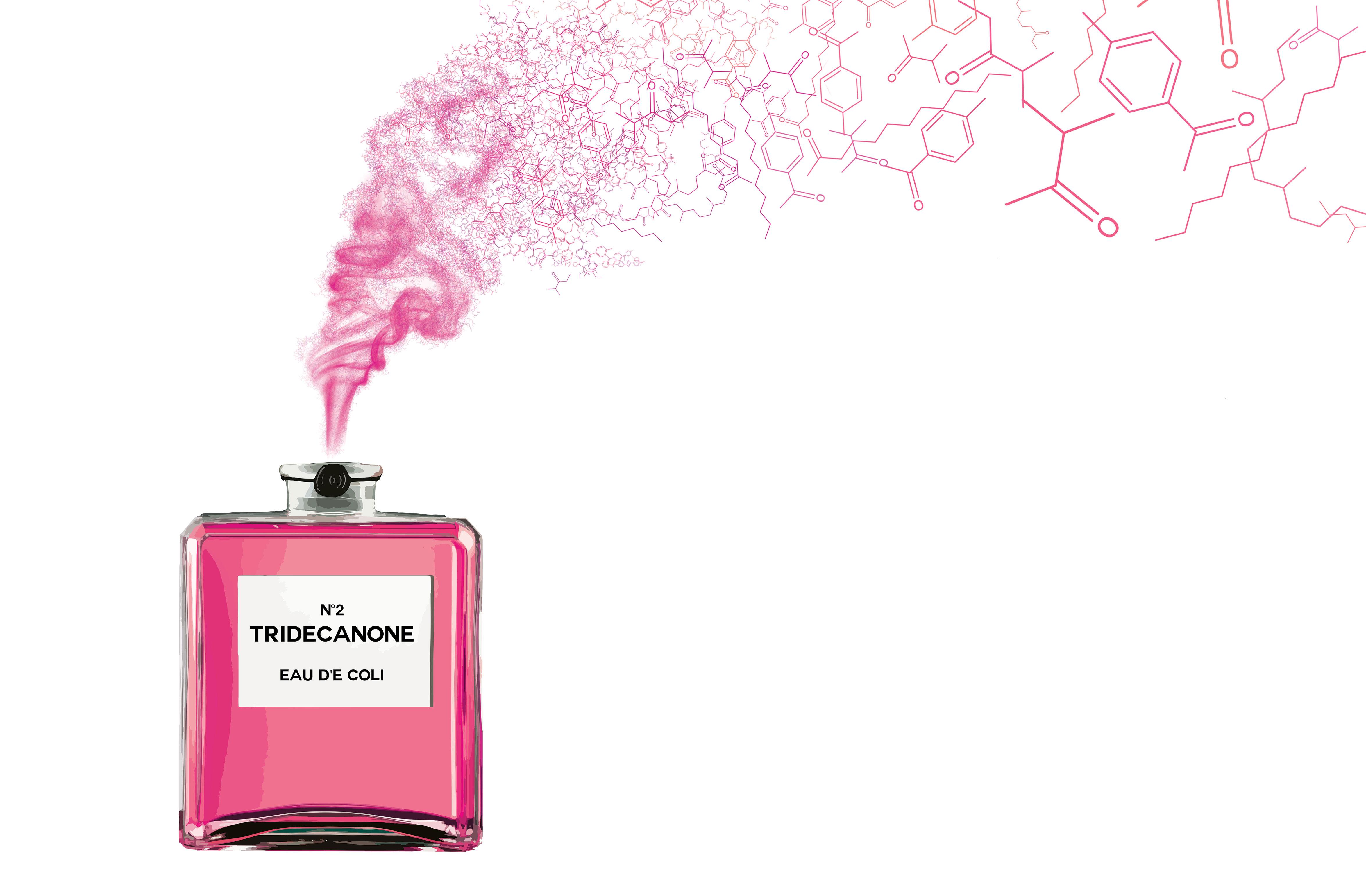 Image result for fragrance chemical