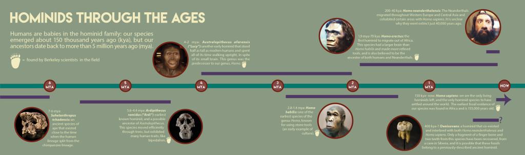 Design: Jo Downes. Sahelanthropus: Didier Descouens. Ardipithecus: Tim White. Australopithecus: 1997. Habilis: lilyundfreya. Erectus and Neanderthal: Tim Evanson. Denisovan tooth: Thilo Parg.