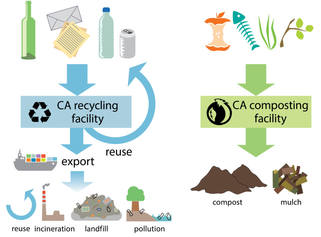 What happens to our waste? Overview of the recycling and composting process in CA. Credit: Nicole Repina
